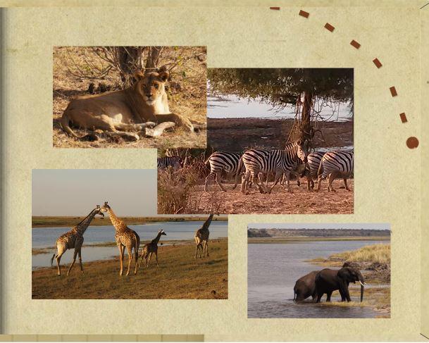 Zambia Photobook page 25